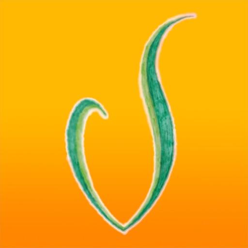 green vegan