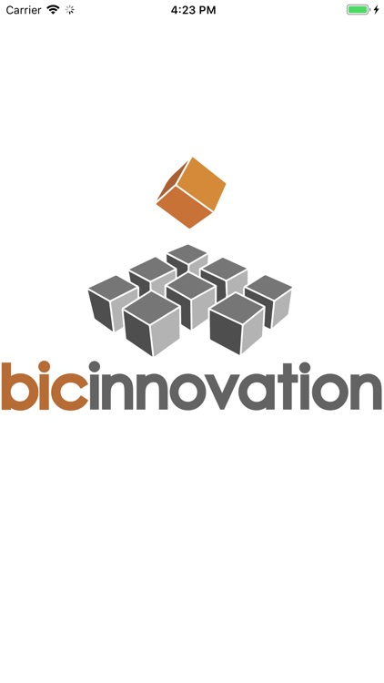 BIC Innovation Project Logger