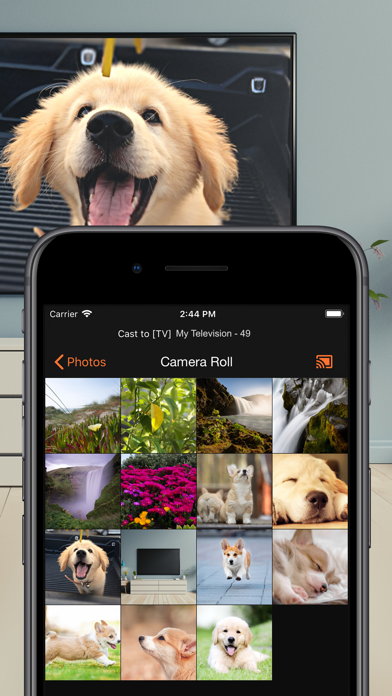 Download SmartCast - TV Mirror for Android
