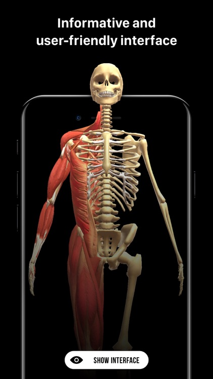 Discover Human Body AR screenshot-4
