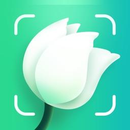Plant.ID: Identify Plants