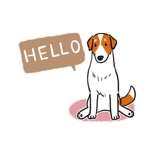 Jack Russel Terrier Dog icon