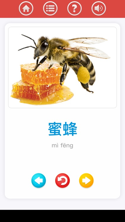 Chinese for beginner screenshot-4