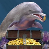 Codes for Where's the Dolphin? Hack