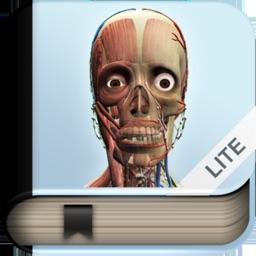 Explain 3D: Human body LITE