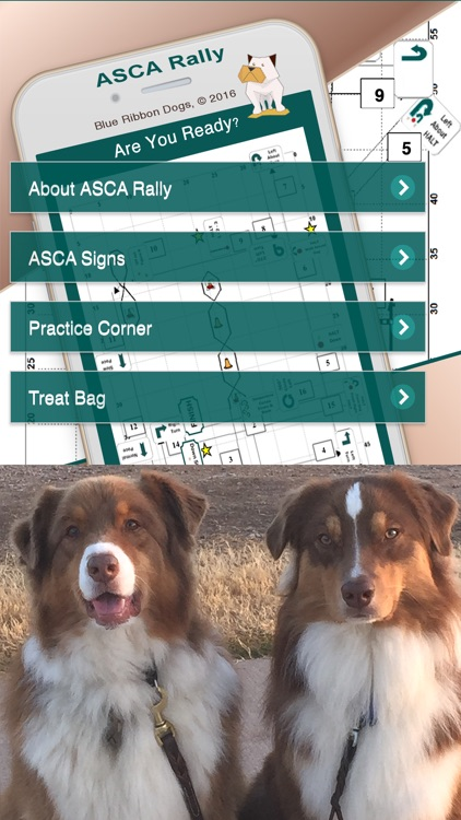 ASCA Rally Obedience screenshot-0