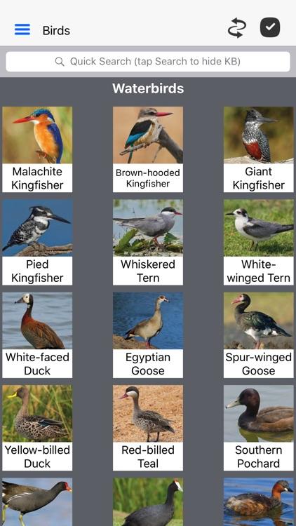 Animals of Pilanesberg screenshot-3