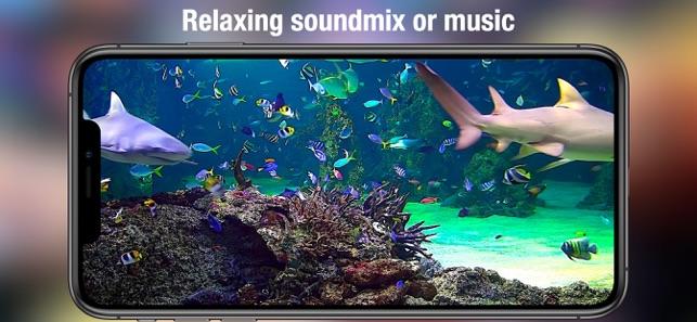 Aquarium Live Hd On The App Store