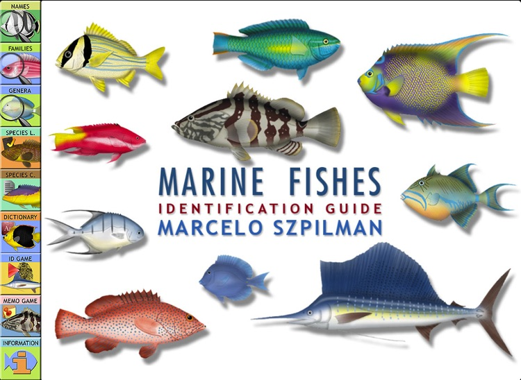 Marine Fishes Id Guide