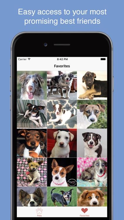 Pet Search - Adopt a Pet screenshot-4