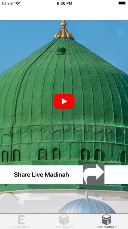 Halal Check E-Numbers screenshot-3