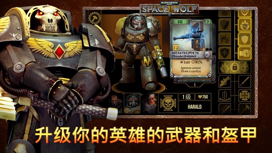 Warhammer 40,000: Space Wolf-6