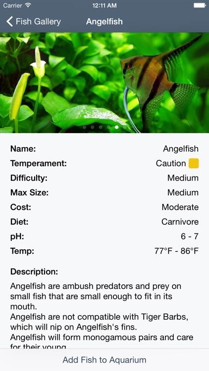 My Aquarium Guide