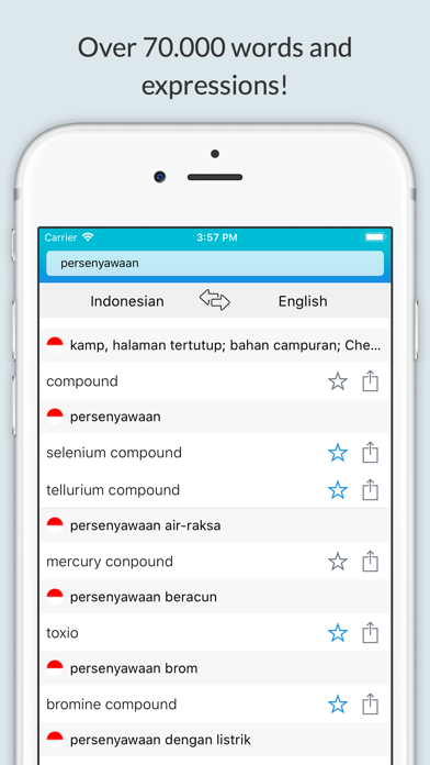 English Indonesian Dictionary+ screenshot 3
