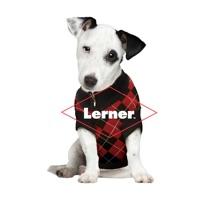 Codes for Lerner Digital eReader Hack