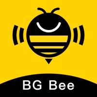 Banggood Affiliate