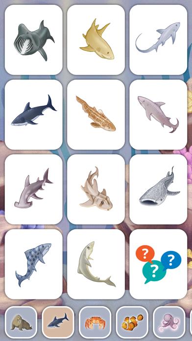 Marine Creatures Cards of Sea Screenshot