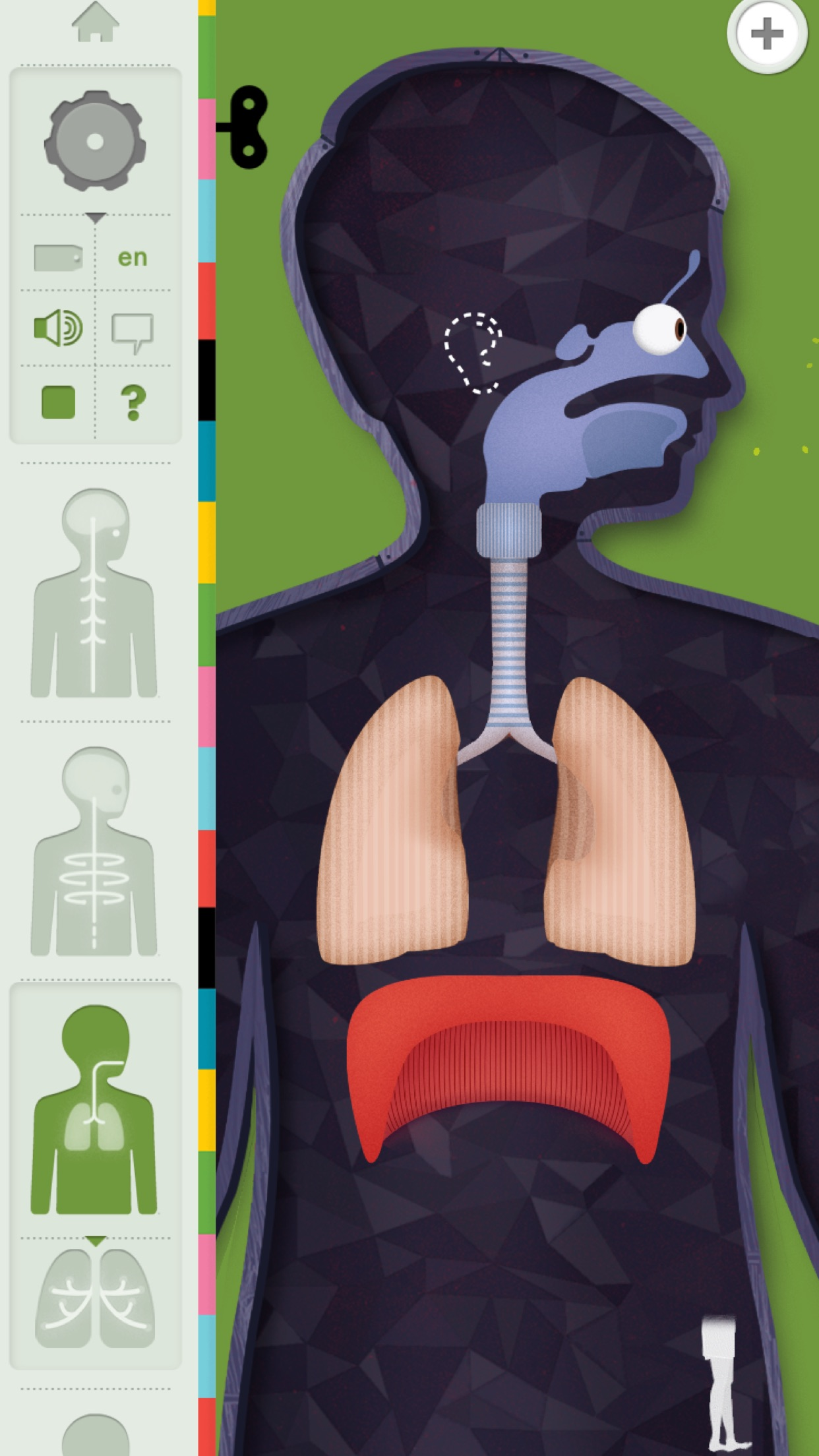 Screenshot do app O Corpo Humano por Tinybop