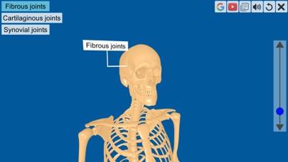 Joints: The Human Levers screenshot 2
