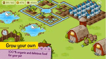 Virtual Pet Corny and Farm. screenshot four