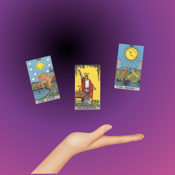 Learn Tarot app review