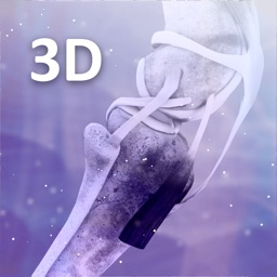3D Joints Tool