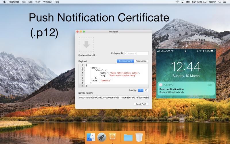 Pushever review screenshots