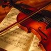 古典音乐学习| 工作时间