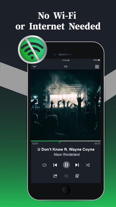Offline Music Player app image