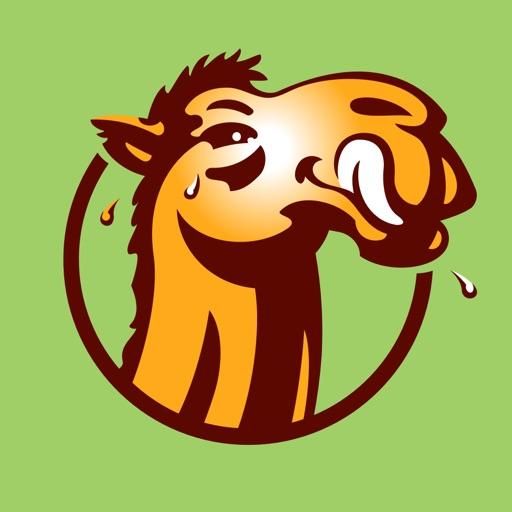 Thirsty Camel WA
