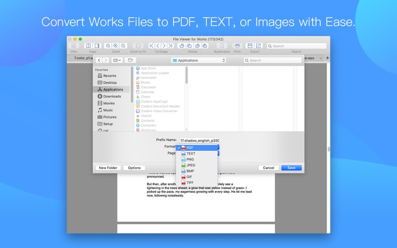 File Viewer for Works