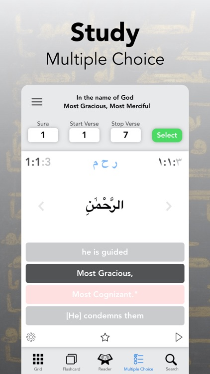 Quran Study – Word by Word screenshot-5