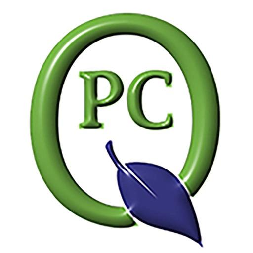 Q ParentConnection