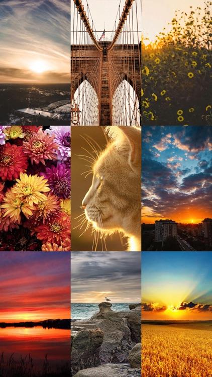 Beautiful HD Wallpapers 50000+ screenshot-6