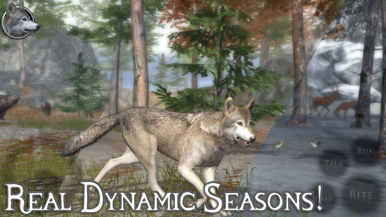 Ultimate Wolf Simulator 2 screenshot-3