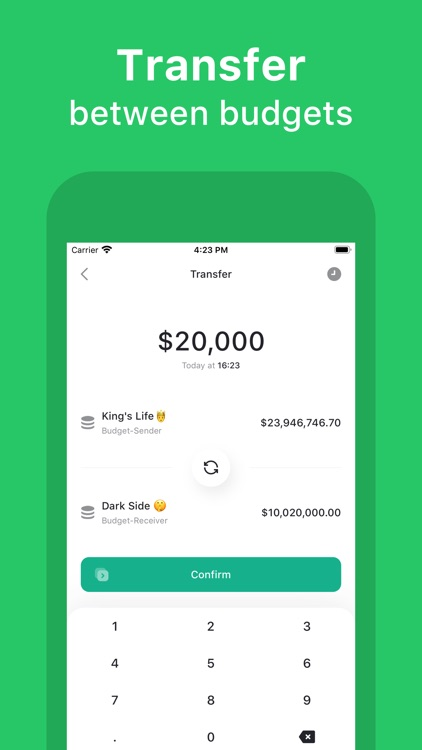 Qoin - Expenses and Incomes screenshot-6
