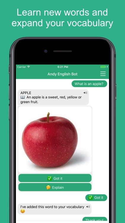English with Andy - Chat&Learn screenshot-4