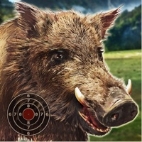 Codes for Wild Boar Target Shooting Hack