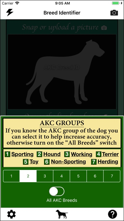 Dog Breed Identifier screenshot-5