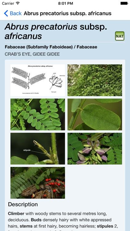 Rainforest Plants of Australia screenshot-3
