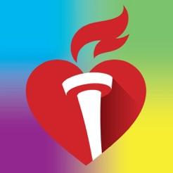 Image result for kids heart challenge