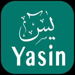 Surah Yasin  Surah Yaseen
