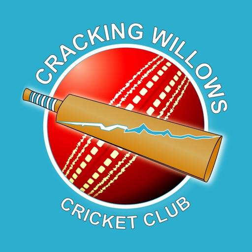 Cracking Willows