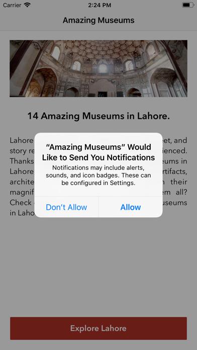 Amazing Museums screenshot 2
