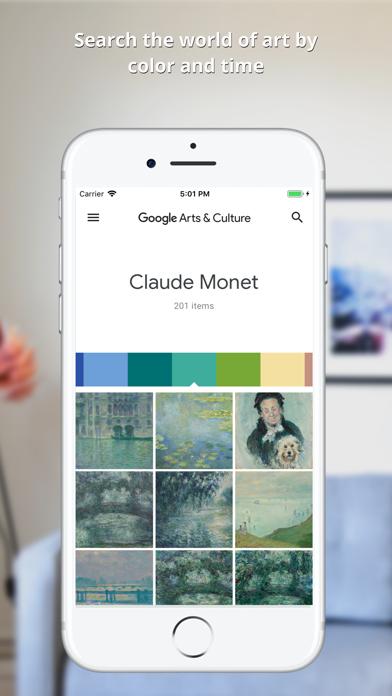 Google Arts & Culture-4