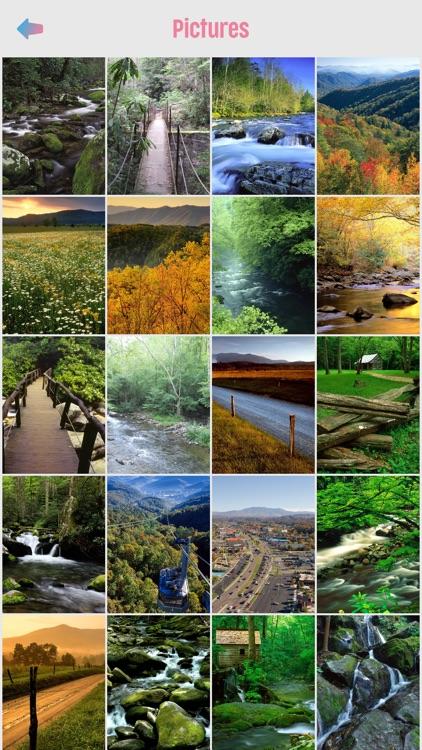 Great Smoky Mountains screenshot-3
