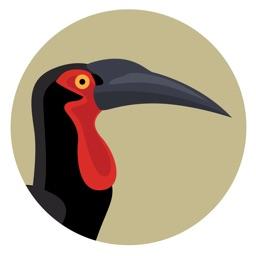 BirdPro