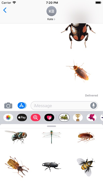 Insects Stickers screenshot-2