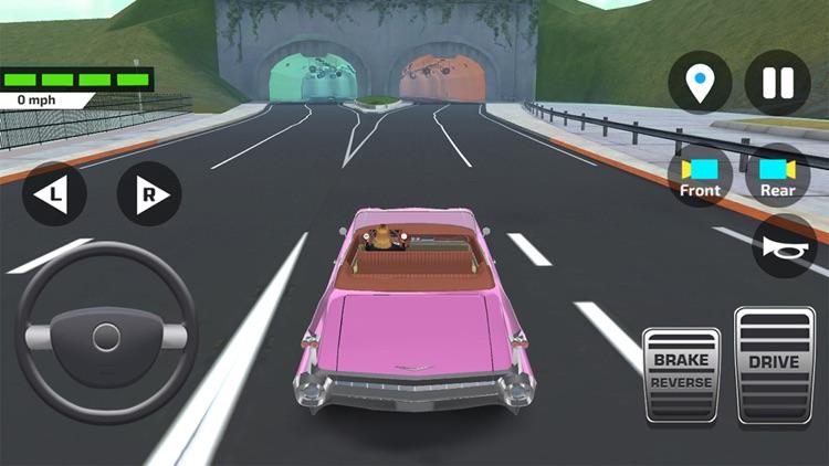 Driving Test Simulator Game screenshot-6