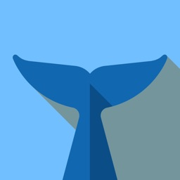 Flipper - Mirror Image Editor